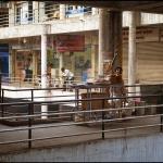 2012-02-24_Indien-2012_2500