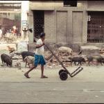2012-03-13_Indien-2012_3459