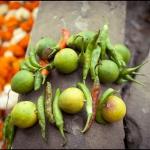 2012-03-13_Indien-2012_3469