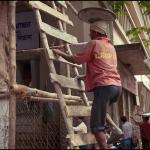 2012-03-13_Indien-2012_3562